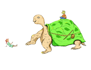 turtle-meeting-trans