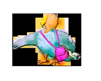 Kuboraccoon